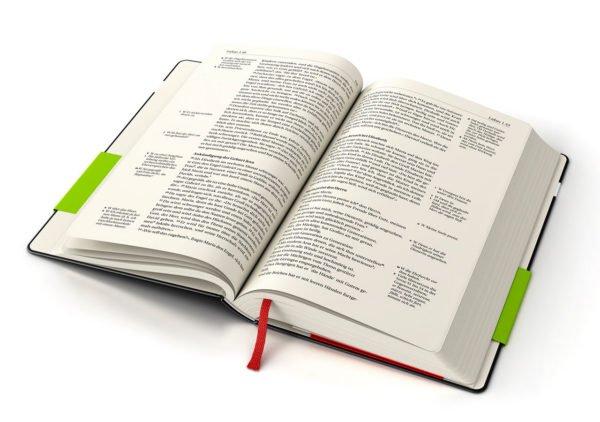 NGÜ Buchdesign ©gobasil ~ Agentur für Kommunikation, Hamburg Hannover